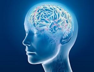 NLP programming the brain